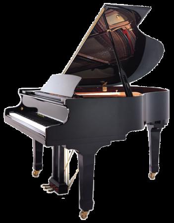 פסנתר כנף חדש Hailun HG161