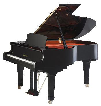 פסנתר כנף חדש Hailun HG198