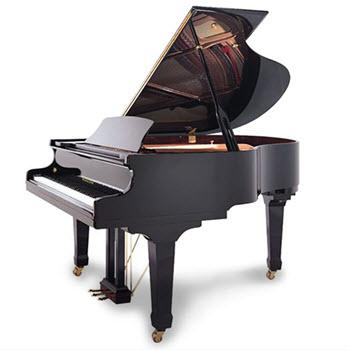 פסנתר כנף חדש Hailun HG151