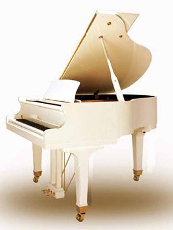 פסנתר כנף חדש Hailun HG151W