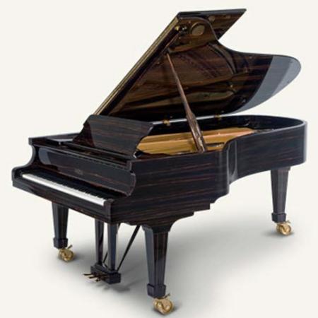 פסנתר כנף חדש פציולי עיצוב מיוחד Macassar
