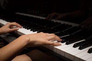 קונצרטים וסדנאות
