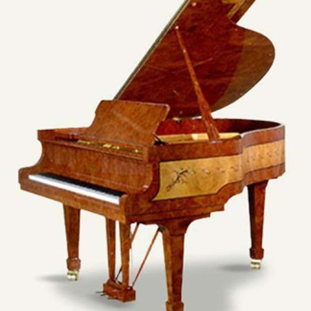 פסנתר כנף חדש פציולי עיצוב מיוחד Royal