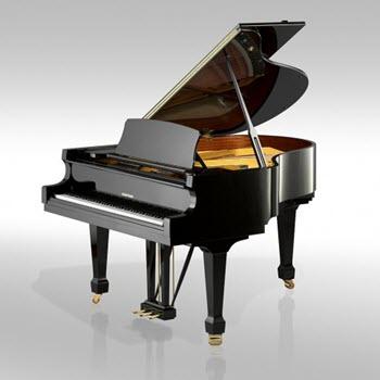 פסנתר כנף חדש W. Hoffmann T161