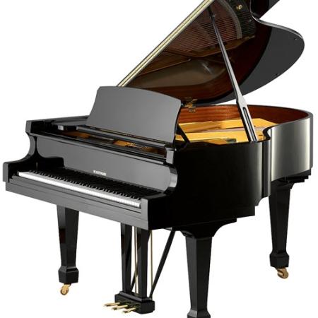 פסנתר כנף חדש W. Hoffmann T186
