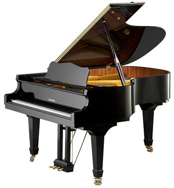 פסנתר כנף חדש W. Hoffmann V183
