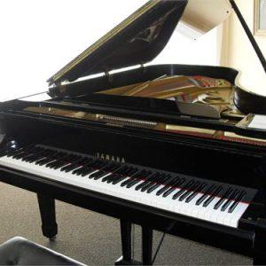 נפלאות פסנתרי כנף (פסנתר כנף איכותי במיוחד) - עולם הפסנתרים LQ-43